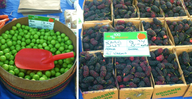 Plums and Mulberries